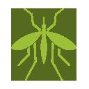 Disinfestazione insetti